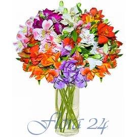 Львов доставка цветов розы дэвида остина на штамбе купить